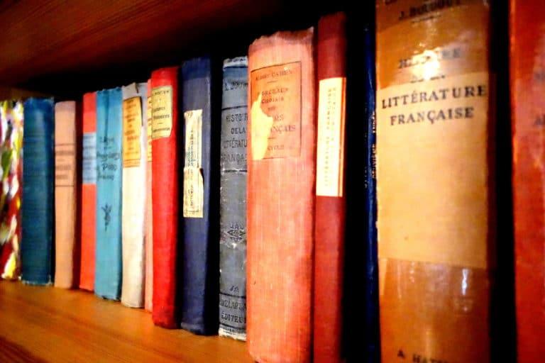 Livres sur la littérature