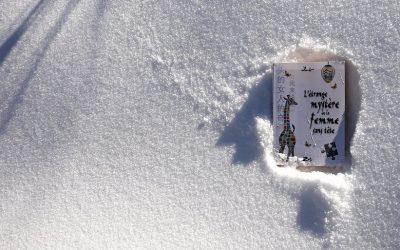 etrange-neige5-001